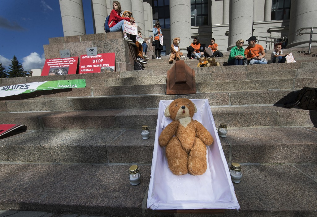 Protesters display a symbolic coffin containing a toy bear, during a protest rally near Lithuania parliament in Vilnius, Lithuania, Sunday, Sept. 16, ...