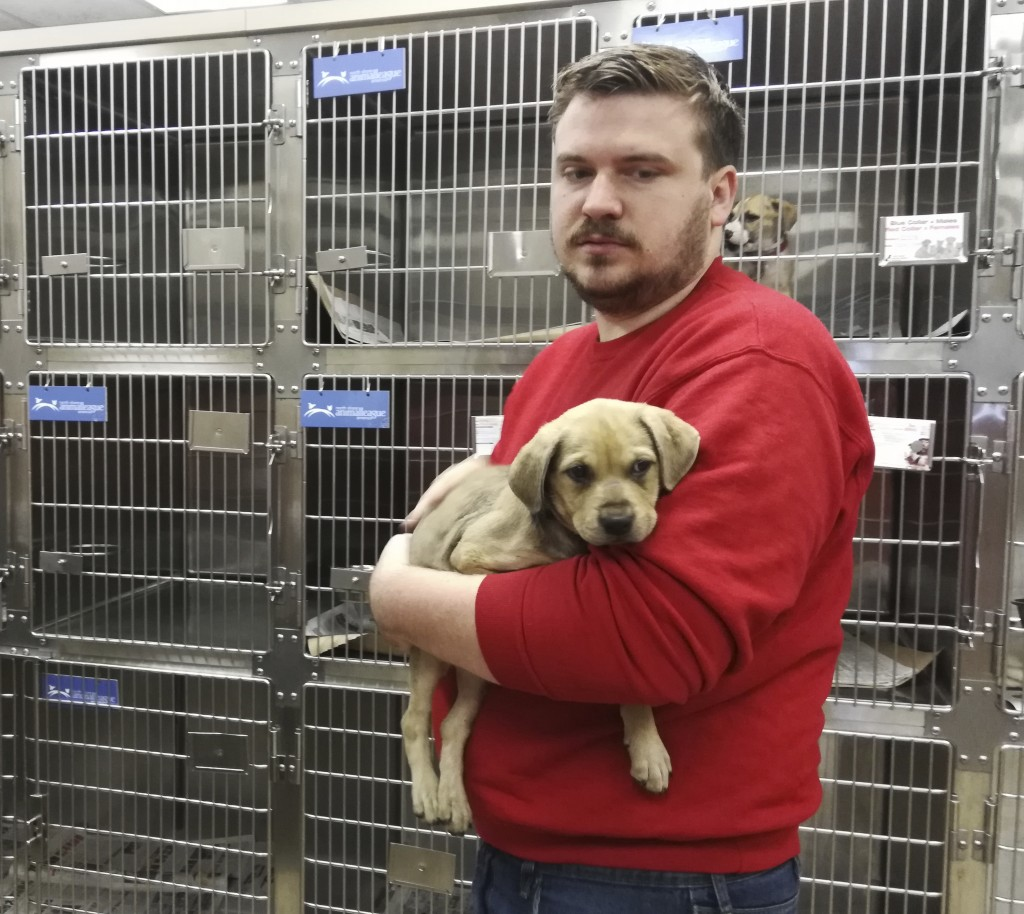 Craig Camara, a volunteer North Shore Animal League, holds a puppy that was rescued from a shelter in one of the three states in the path of Hurricane