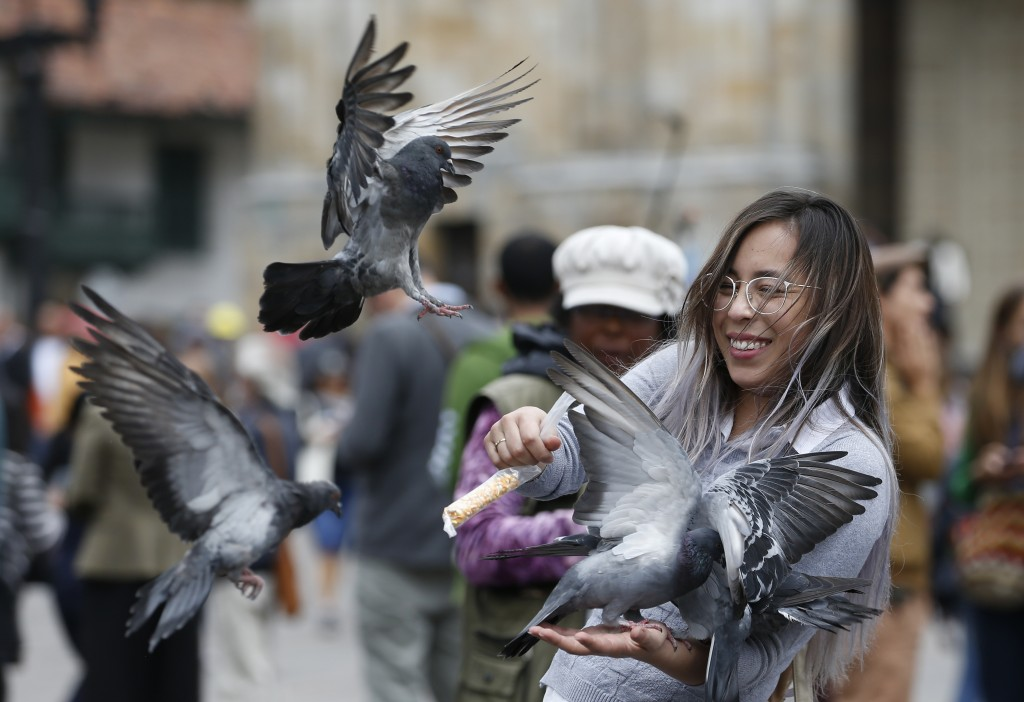 A woman feeds pigeons at Bolivar Square in Bogota, Colombia, Tuesday, Oct. 2, 2018. Feeding pigeons corn and taking a photo with them in Bolivar Squar...