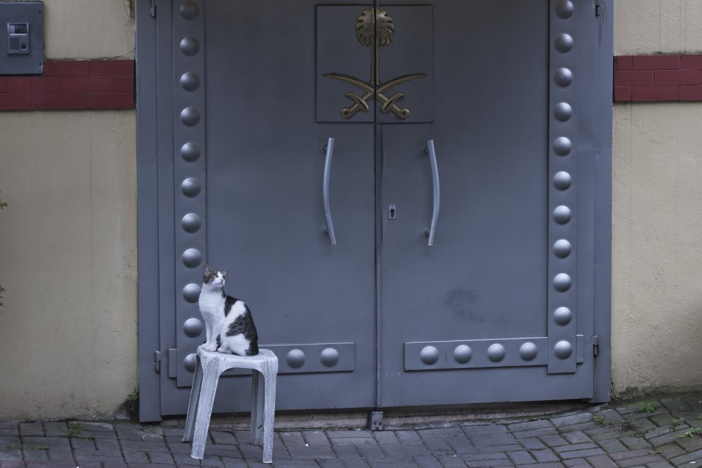 A cat sits in front of the entrance of Saudi Arabia's consulate in Istanbul, Saturday, Oct. 13, 2018. Turkish officials have an audio recording of the