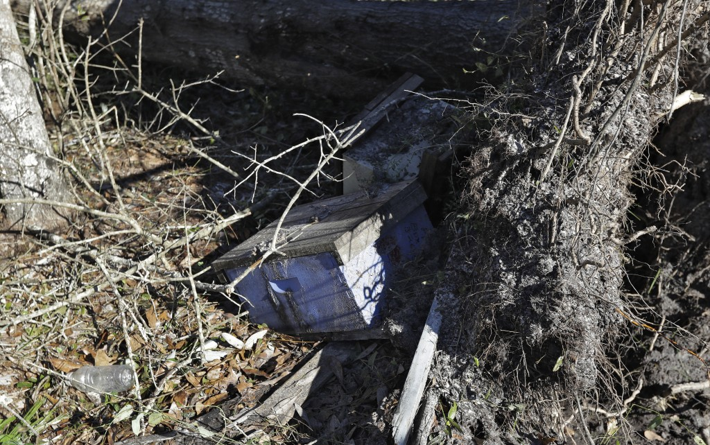 In this Friday Oct. 12, 2018 photo, beehives are damaged after a tree was knocked down near the hives by winds from Hurricane Michael in Wewahitchka,