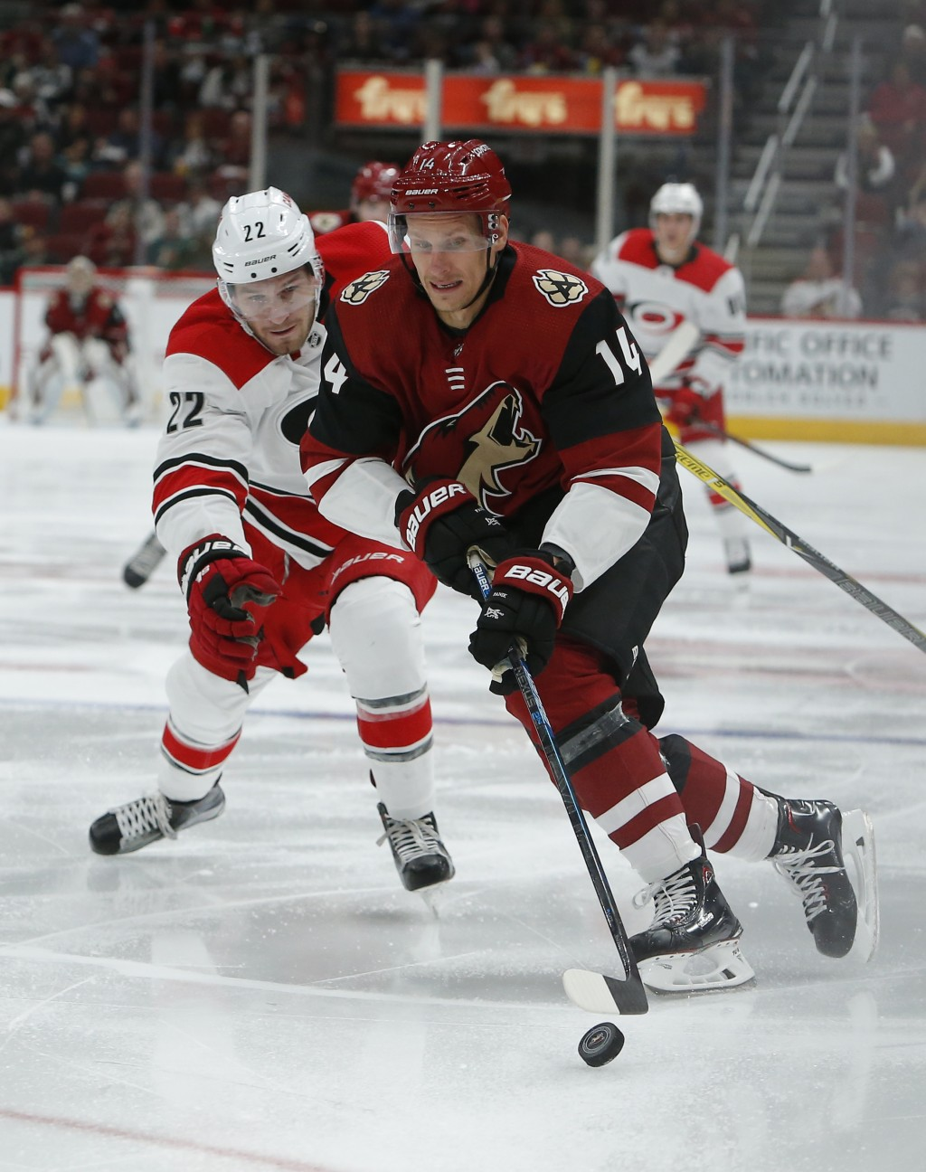 Arizona Coyotes right wing Richard Panik (14) shields Carolina Hurricanes defenseman Brett Pesce from the puck during the second period of an NHL hock...