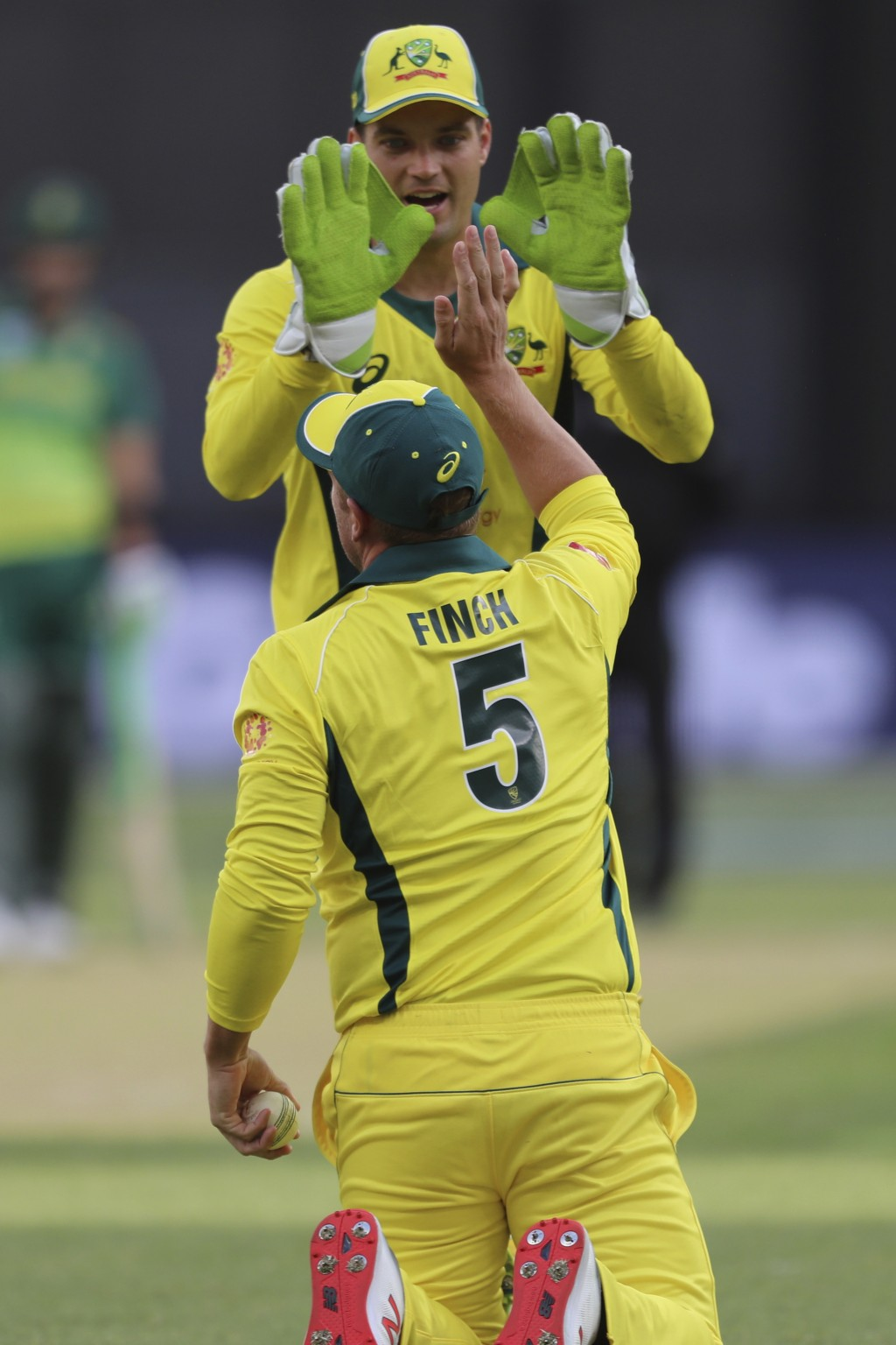 Australia's Aaron Finch celebrates with wicketkeeper Alex Carey after he caught South Africa's South Africa's Heinrich Klaasen during their one-day in