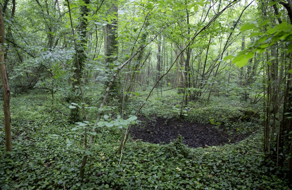 FILE In this Wednesday, May 23, 2018 file photo, a World War I bomb crater in the woods among overgrowth and trees near the American Monument of Chate