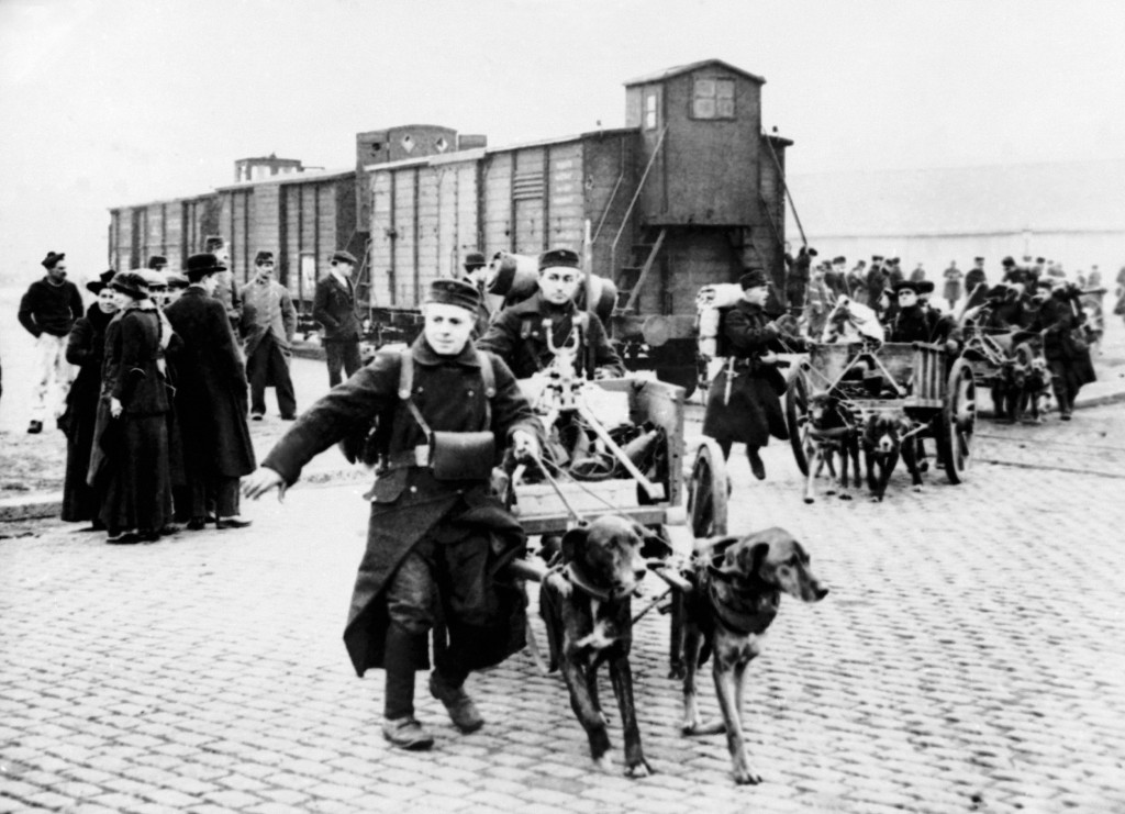 FILE - In this undated WWI file photo, soldiers move toward the front with their machine guns and ammunition pulled by dogs in Belgium. They were mess