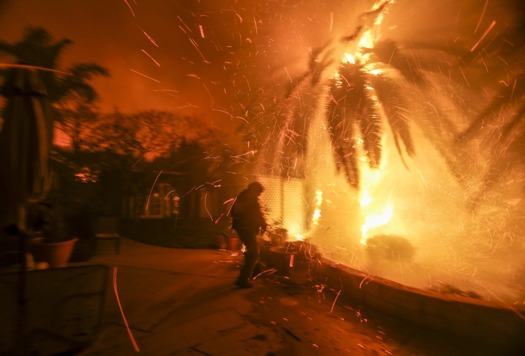 Tim Billow, 62, tries to save his plantings in his backyard as the Woolsey Fire burns in Malibu, Calif., Friday, Nov. 9, 2018. A Southern California w