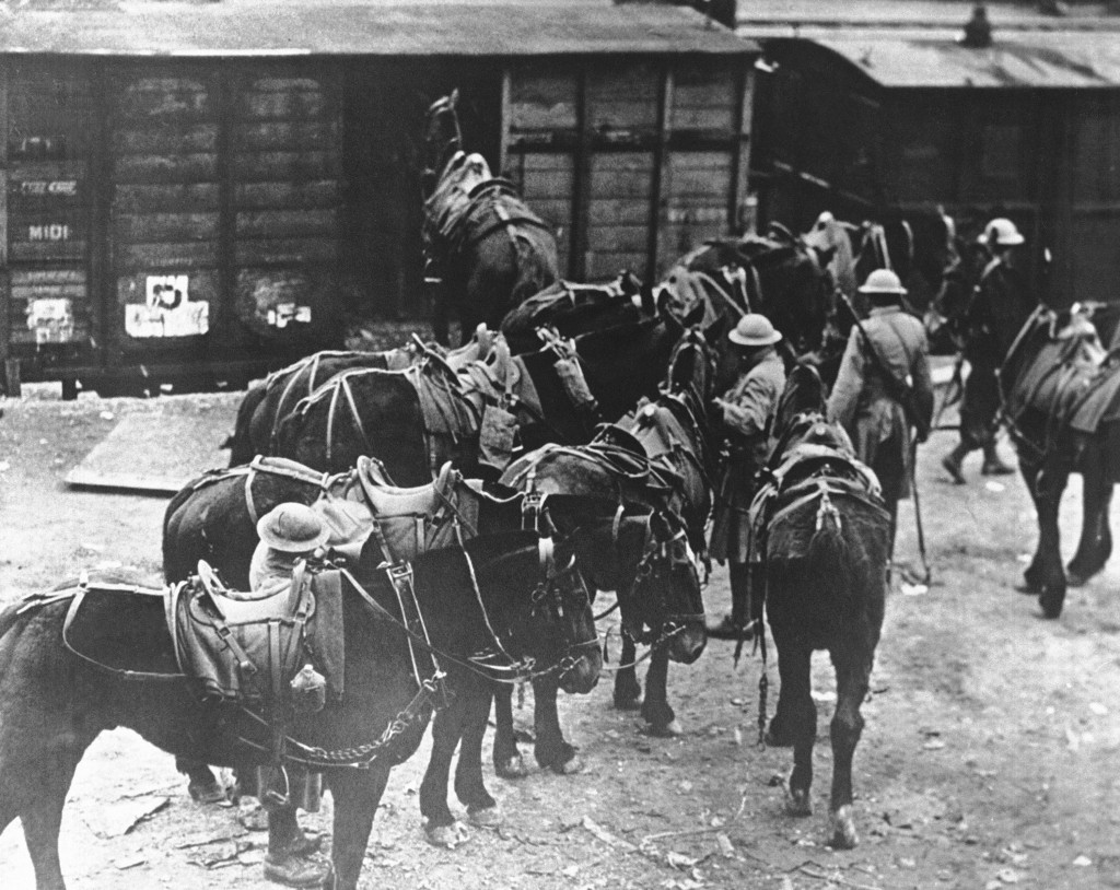 FILE - In this March 7, 1918 file photo, men of U.S. Battery E, 5th Field Artillery Battalion, 1st Infantry Division, load horses onto freight cars in