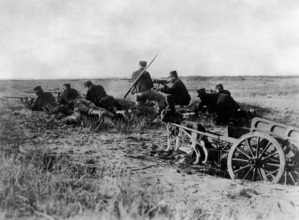 FILE - A Belgian machine gun detachment aims near Haelen, with a dog pulling a cart in August 1914. The Belgians used dogs to draw these guns and ammu