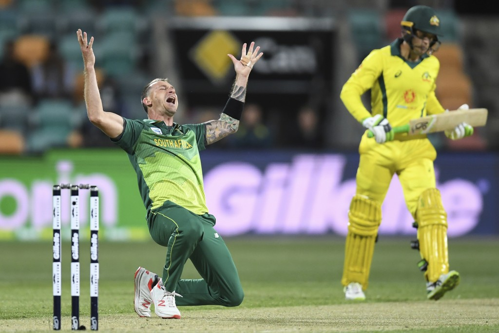 South Africa's Dale Steyn, left, celebrates taking the wicket of Australia's Alex Carey for 42 runs during their One-Day International cricket match i...