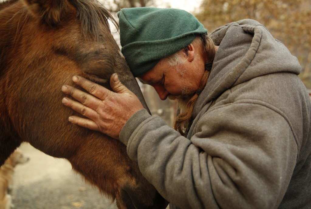"In this Nov. 15, 2018, photo, Troy Miller rubs his horse Sally at his burned out property in Concow, Calif. ""I've got a lot of faith in God. I think t..."