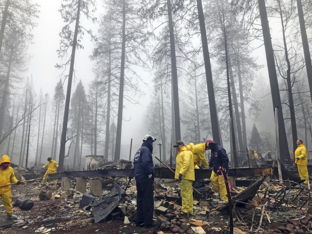After a brief delay to let a downpour pass, volunteers resume their search for human remains at a mobile home park in Paradise, Calif., Friday, Nov. 2...