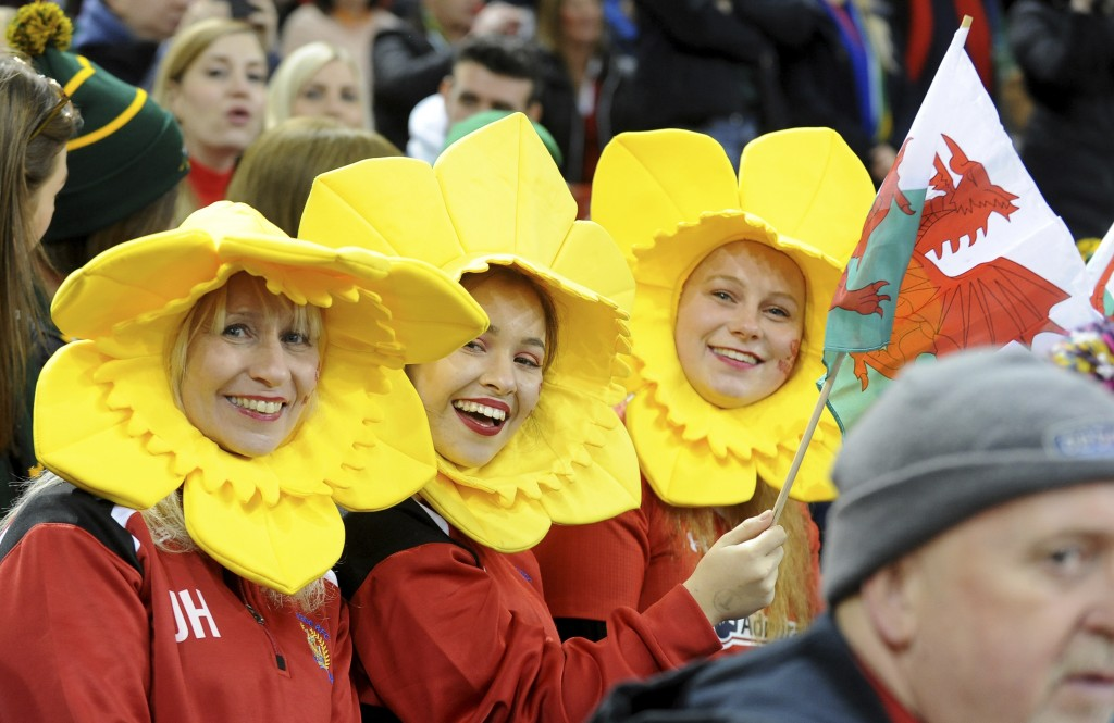 Welsh fans wait for the start of the rugby union international match between Wales and South Africa at the Principality Stadium in Cardiff, Wales, Sat