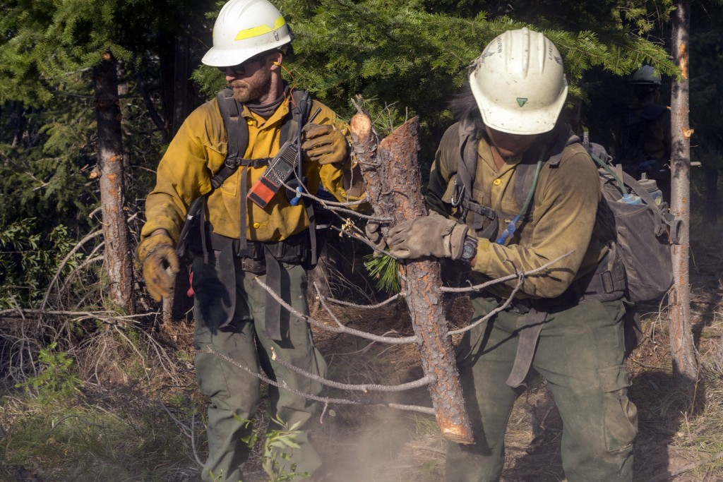 In this Aug. 17, 2018, photo provided by BLM/USDA Forest Service, members of a fire crew out of Lakeview, Ore., works on the Cougar Creek Fire in cent...