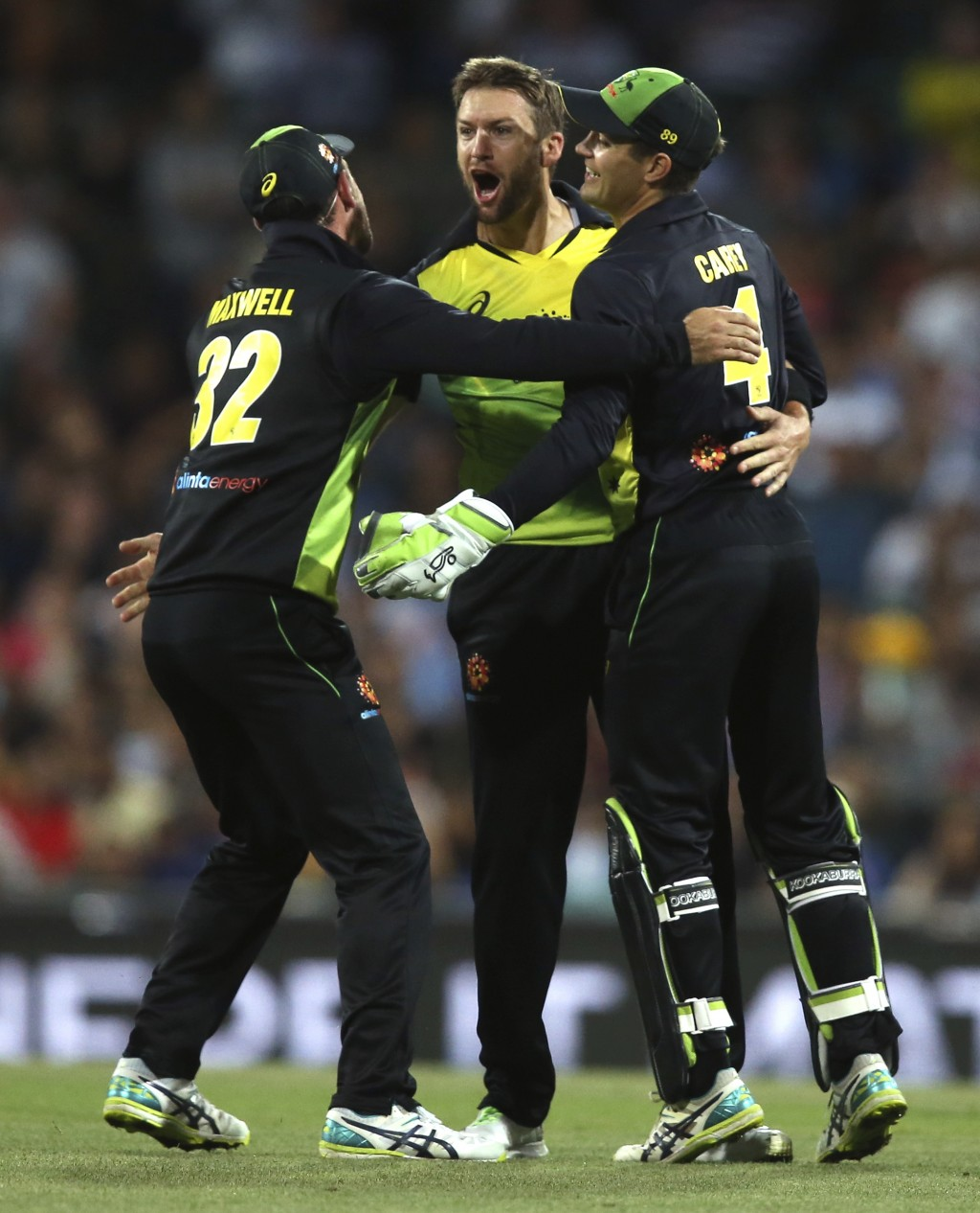 Australia's Andrew Tye, centre, is congratulated by teammates after dismissing India's Rishabh Pant during their Twenty20 cricket match in Sydney, Sun