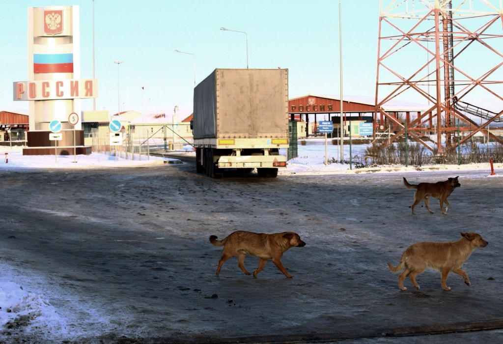 Stray dogs run past the checkpoint at the border with Russia in Hoptivka, Ukraine, Friday, Nov. 30, 2018. Ukrainian officials announced earlier on Fri