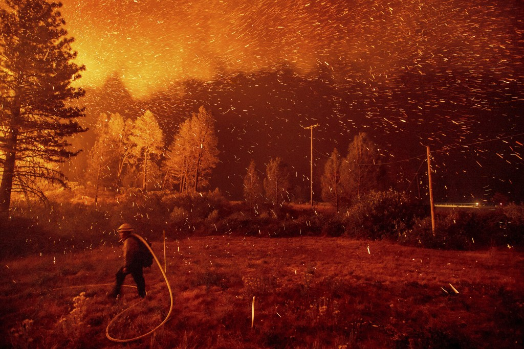Embers fly above a firefighter hustling to control a backfire as the Delta Fire burns in the California's Shasta-Trinity National Forest on Sept. 6, 2...