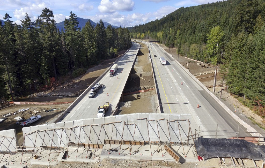In this photo taken Oct. 4, 2018, Interstate 90 traffic passes beneath a wildlife bridge under construction on Snoqualmie Pass, Wash. The stretch of h...
