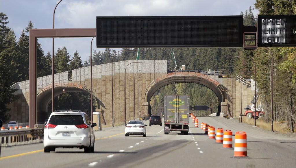 In this photo taken Oct. 4, 2018, westbound Interstate 90 traffic passes beneath a wildlife bridge under construction on Snoqualmie Pass, Wash. The st...