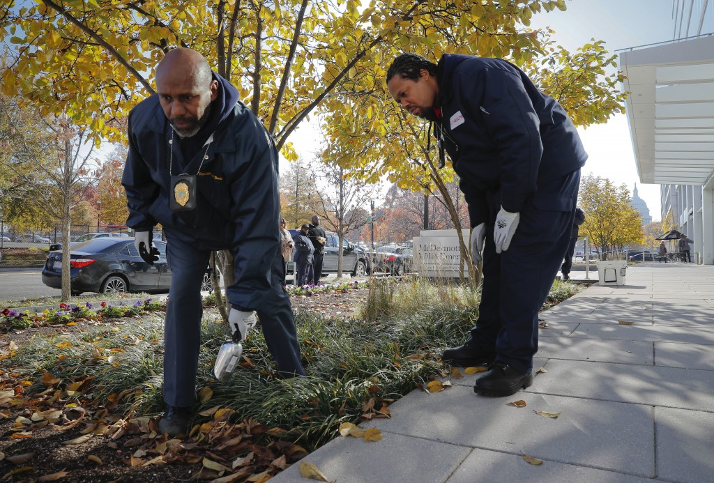 Pest Control Officers Gregory Cornes, left, and Andre Pitman, both from the D.C. Department of Health's Rodent Control Division, searching the flower