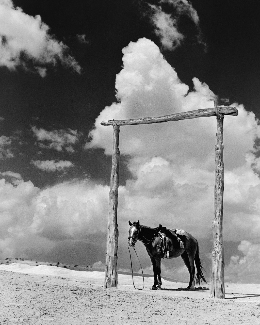 This photo courtesy of the Barry & Peggy Goldwater Foundation,  a Navajo pony stands near a trading post in photograph taken by Barry Goldwater in 193