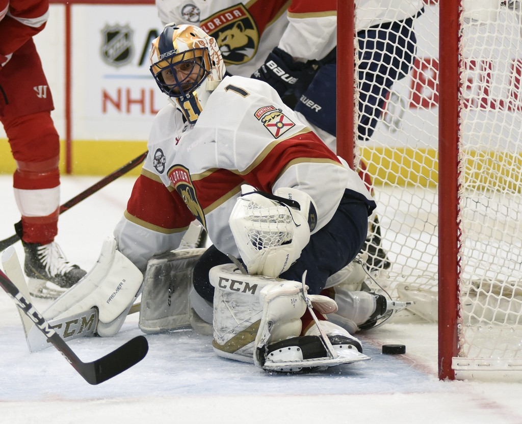 Florida Panthers goaltender Roberto Luongo (1) watches as the puck goes past him, scored by Detroit Red Wings left wing Thomas Vanek of Austria during
