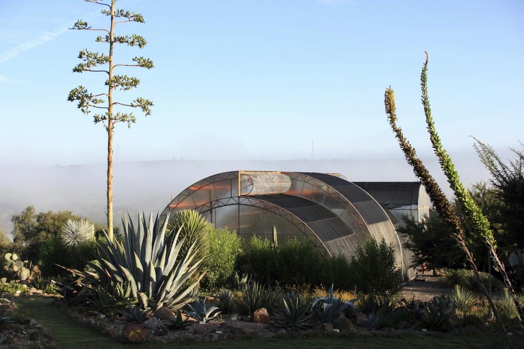 This 2007 photo shows The Conservatory of Plants in El Charco del Ingenio in San Miguel de Allende, Mexico. (El Charco del Ingenio AC via AP)