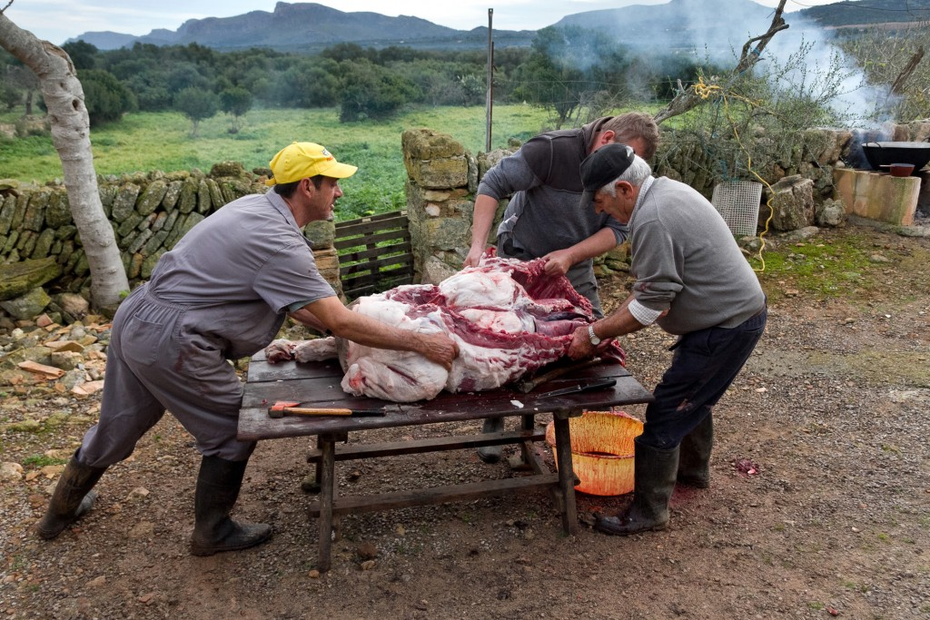 In this photo taken on Nov. 24, 2018, villagers dismember a pig during the annual pig slaughter near Petra, some 60 kilometres from Palma, the capital...