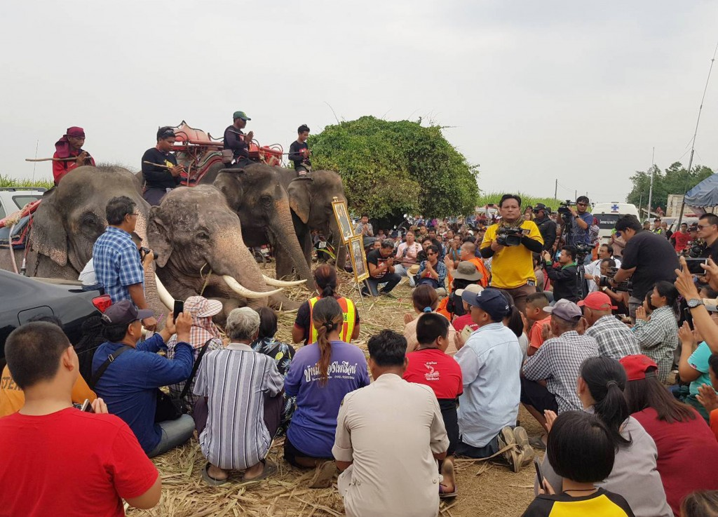 In this Sunday, Dec. 23, 2018, photo released by Suphan Buri City, four mahouts and their elephants attend a prayer session with rescue workers and of...