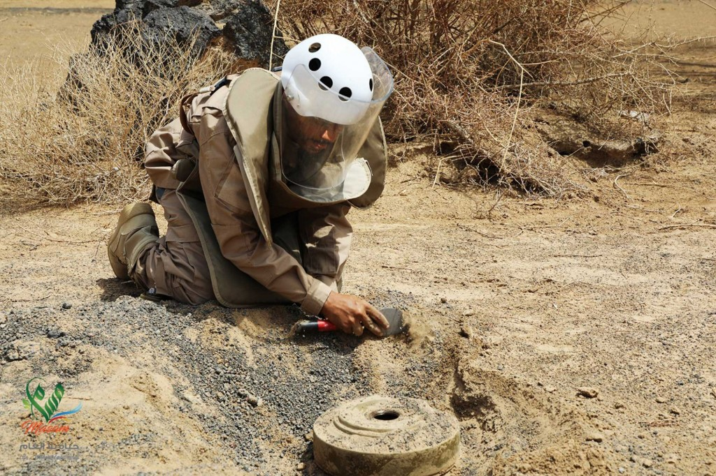 In this undated photograph released Aug. 19, 2018 by the state-run Emirates News Agency (WAM) on behalf of the Saudi-funded Masam anti-mine operation,...