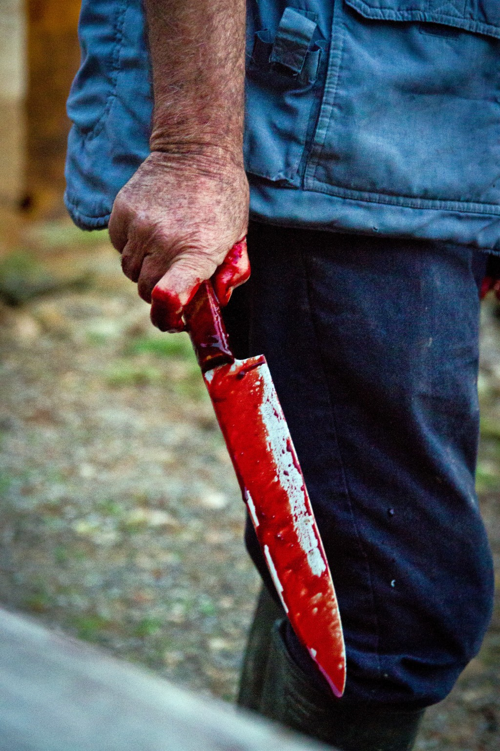 In this photo taken on Nov. 24, 2018, Lorenzo, a professional slaughterer, holds a knife which was used to slaughter a pig near Petra, some 60 kilomet...