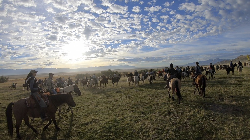 FILE - In this Oct. 27, 2018, file photo, riders on horseback start their annual bison roundup, on Antelope Island, Utah. This year, about 700 bison w...