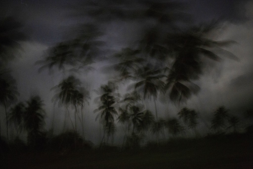 This Sept. 4, 2018 photo shows palm trees as the day begins to break in Irlaya, Honduras. With more than 60 per cent of its 9 million population livin