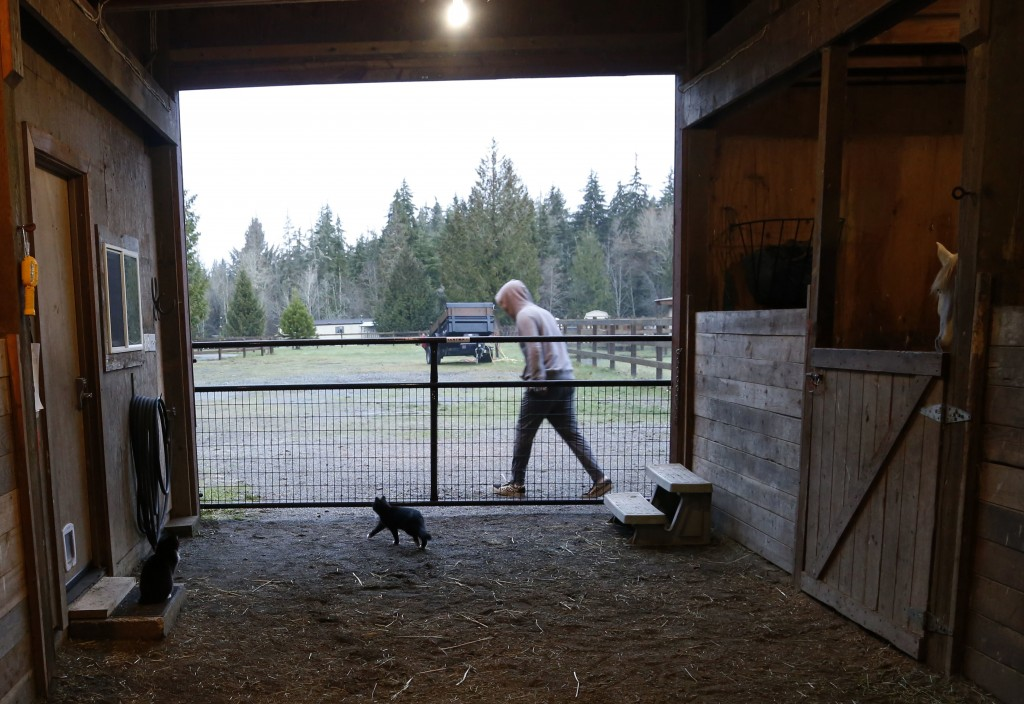 In this Monday, Dec. 10, 2018, photo, Robel, an 18-year-old tech addict from California, leaves a barn after helping feed animals at the Rise Up Ranch