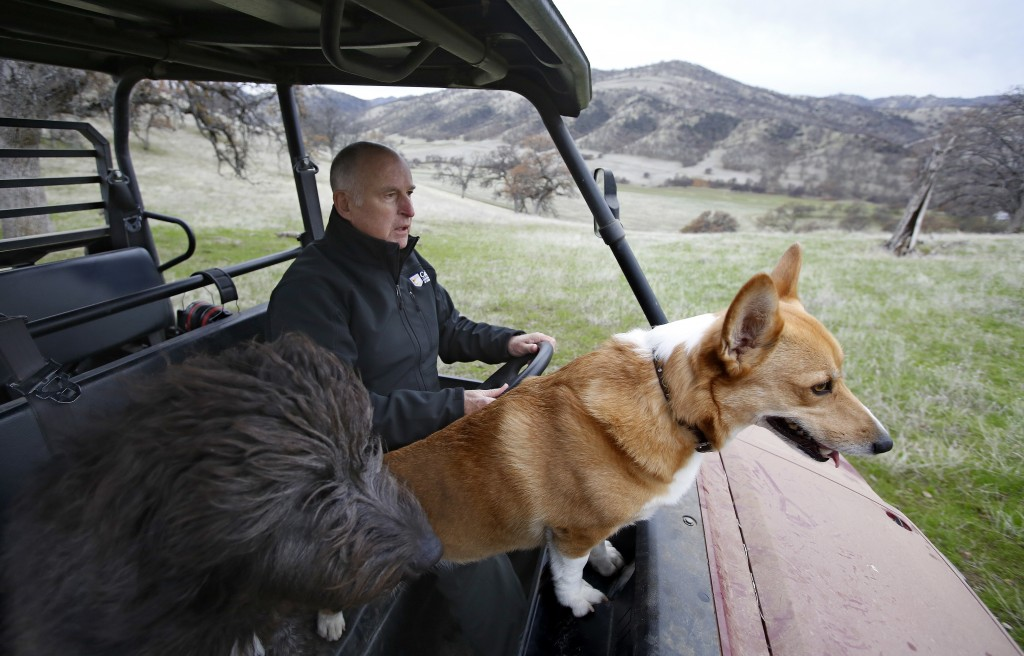 In this Saturday, Dec. 22, 2018, photo, Gov. Jerry Brown tours his Colusa County ranch accompanied by his dogs Cali, left, and Colusa near Williams, C...