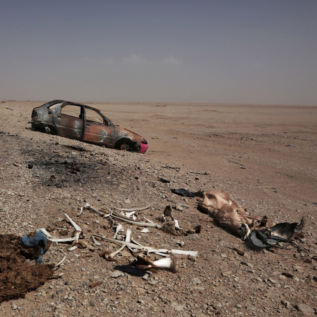 This Aug. 7, 2018 photo shows the desicated carcass of a cow near a destroyed car on a the road in Shabwa, Yemen. (AP Photo/Nariman El-Mofty)