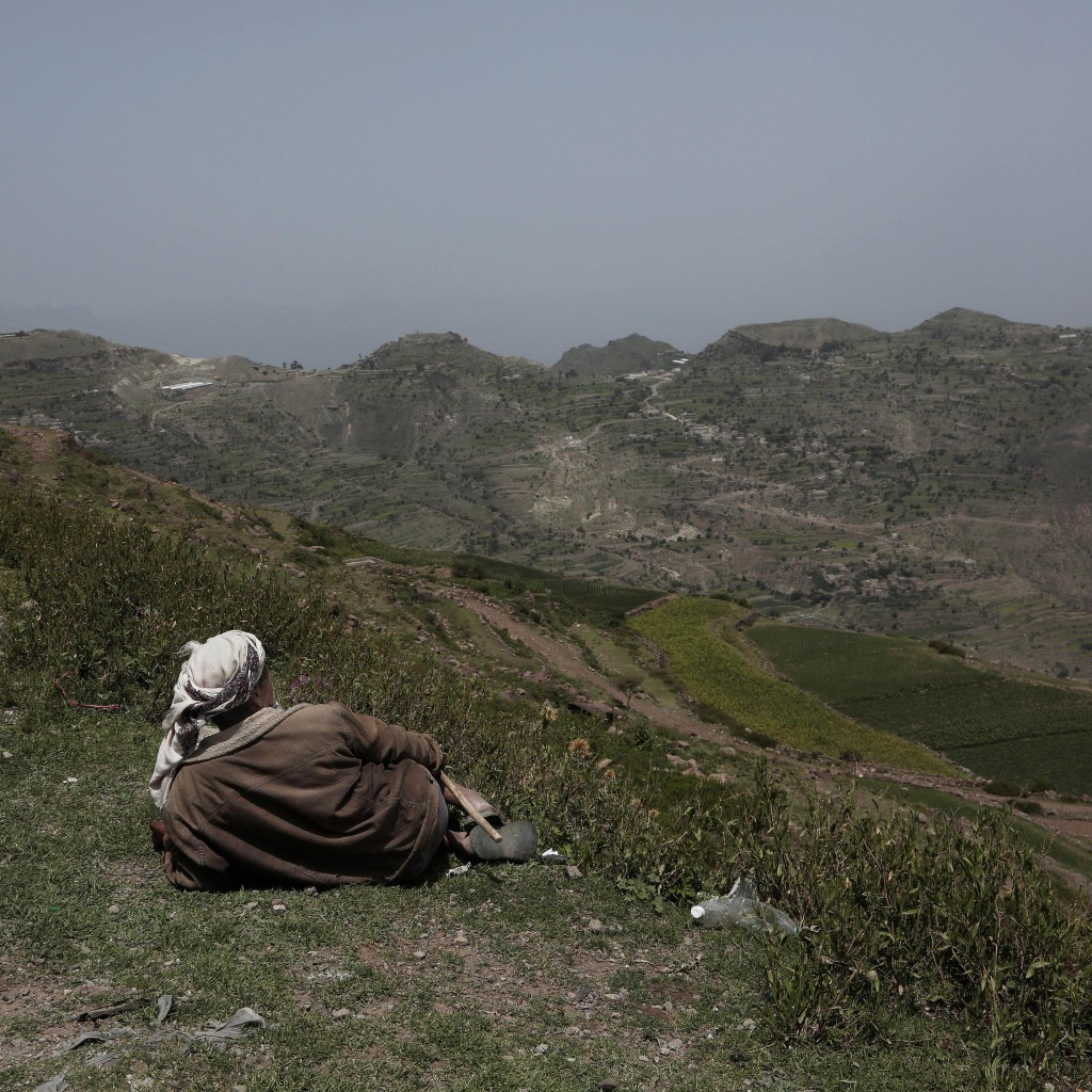 A farmer gazes at mountains where the terraces were planted with corn, barbary figs and qat on the side of a road in Ibb, Yemen on Aug. 3, 2018. (AP P...