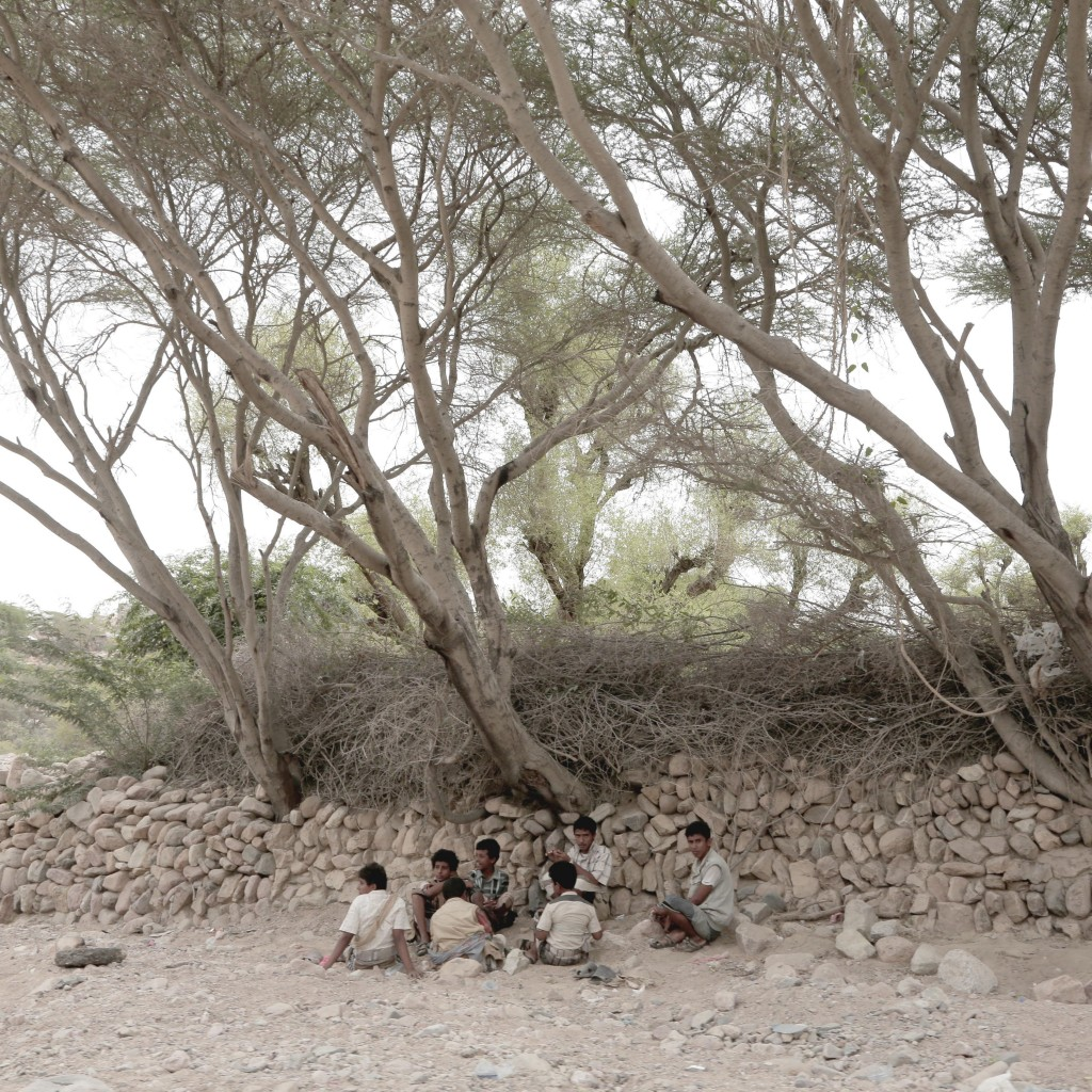 Men gather under trees in Shabwa, Yemen, on July 24, 2018. (AP Photo/Nariman El-Mofty)
