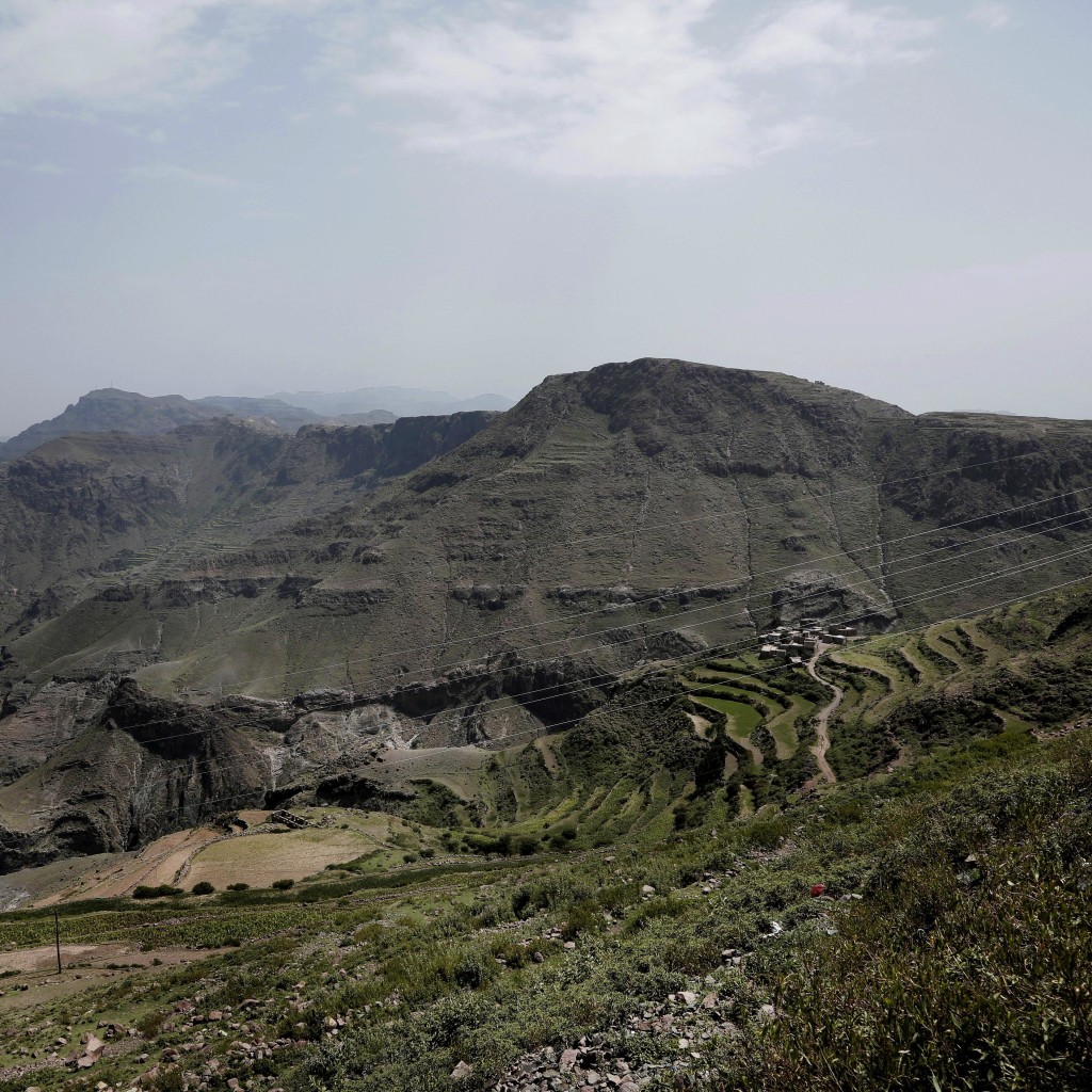 This Aug. 3, 2018 photo shows a green mountain landscape, where the terraces were planted with corn, barbary figs and qat, in Ibb, Yemen. (AP Photo/Na...
