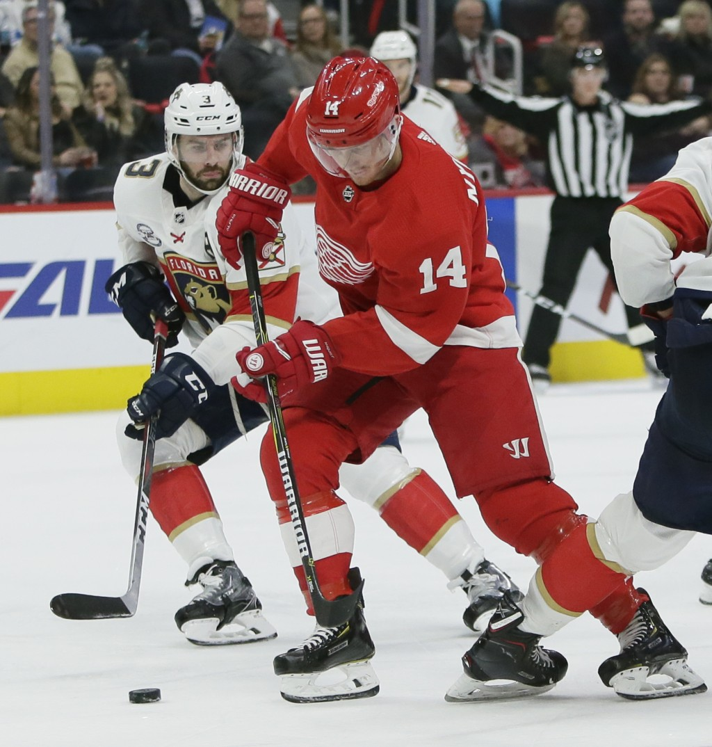 Detroit Red Wings center Gustav Nyquist (14), of Sweden, is pursued by Florida Panthers defenseman Keith Yandle (3) while driving on the goal during t