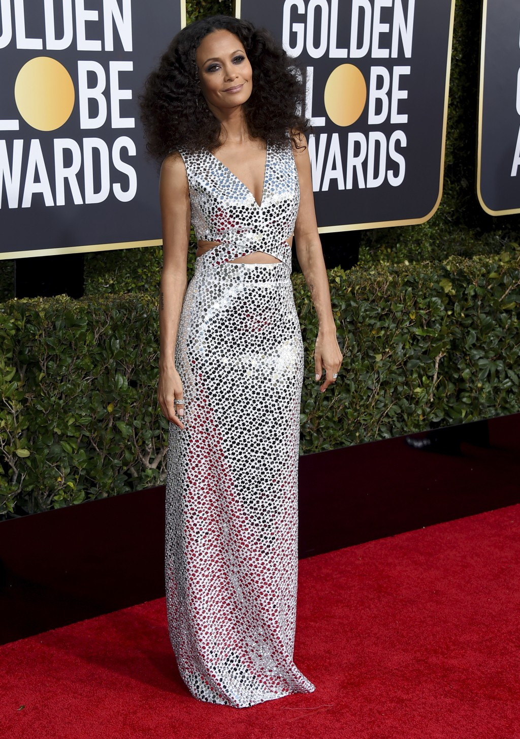 Thandie Newton arrives at the 76th annual Golden Globe Awards at the Beverly Hilton Hotel on Sunday, Jan. 6, 2019, in Beverly Hills, Calif. (Photo by