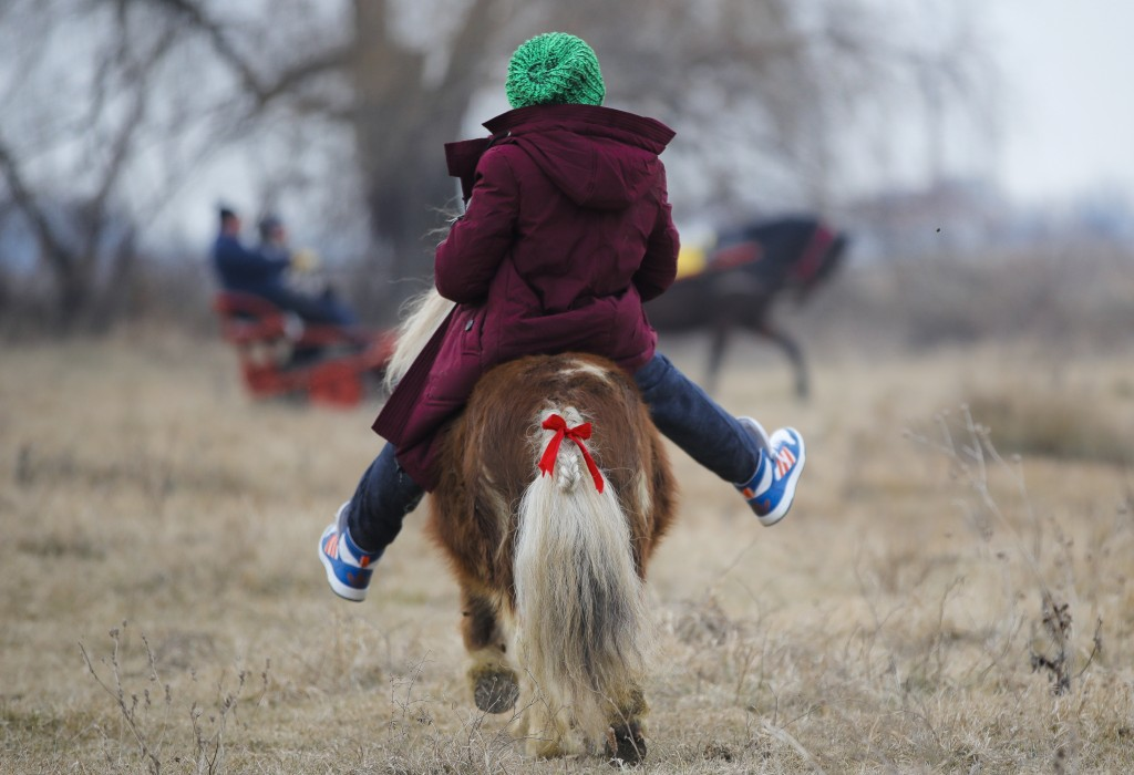 In this Sunday, Jan. 6, 2019, photograph a child rides a pony during Epiphany celebrations in Pietrosani, Romania. The horse race tradition started in