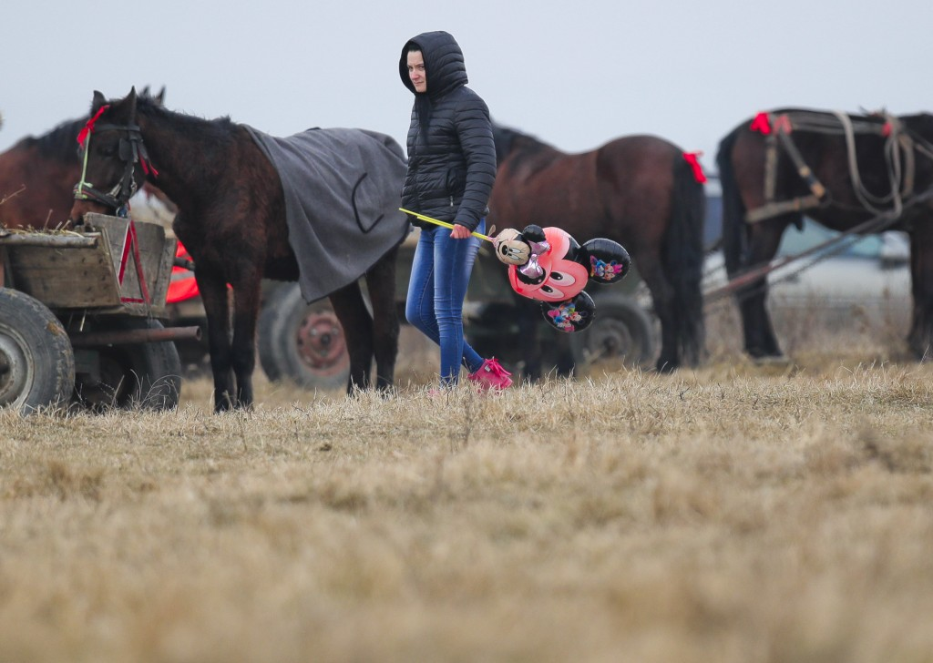 In this Sunday, Jan. 6, 2019, a woman holding Mikey Mouse balloons walks by horses after an Epiphany celebration horse race in Pietrosani, Romania. (A