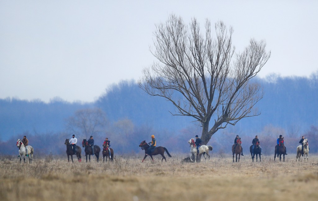 In this Sunday, Jan. 6, 2019, villagers on horseback wait for the start of an Epiphany celebration horse race in Pietrosani, Romania. The horse race t