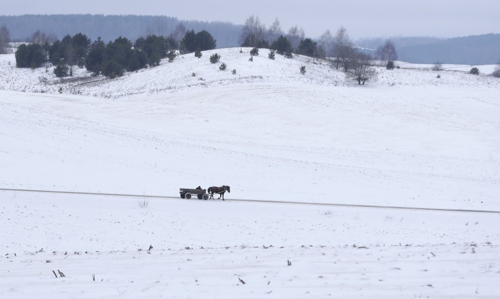 A man rides a traditional cart through the wind in the snow-covered village of Nesutychi, 140 kilometers (87 miles) west of Minsk, Belarus, Saturday,