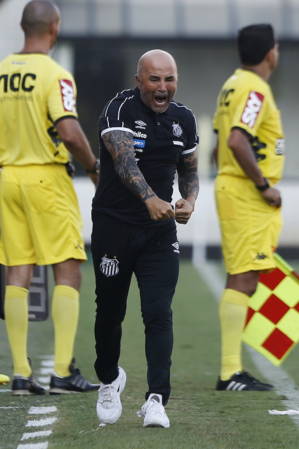 Jorge Sampaoli, coach of Santos, celebrates after the first goal during a Sao Paulo Soccer league championship match against Ferroviaria in Santos, Br...