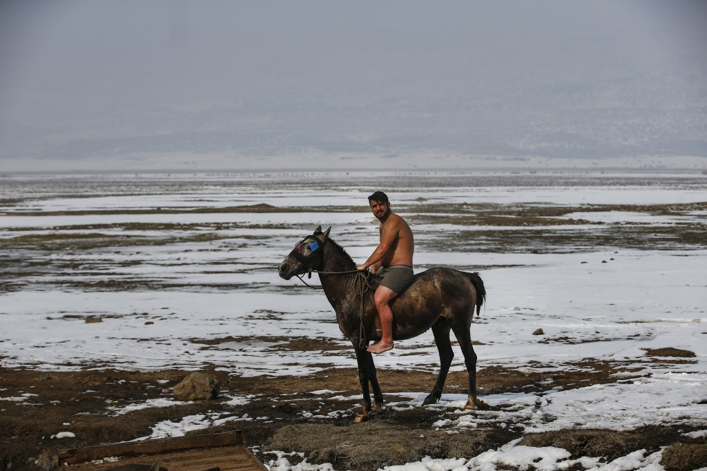 In this Thursday, Jan. 24, 2019 photo, Muhammed Toren, rides his horse after a bath in a hot spring along with his water buffaloes near the village of