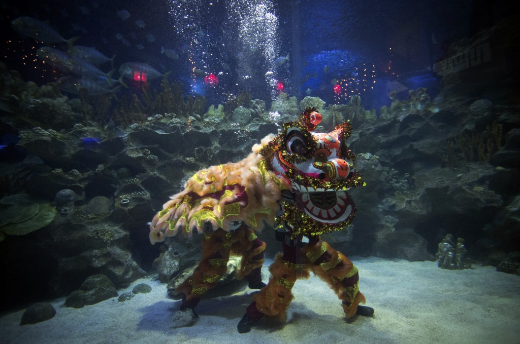 In this Wednesday, Jan. 30, 2019, photo, two divers perform an underwater Chinese Lion Dance ahead of Chinese New Year celebrations at Aquaria KLCC un