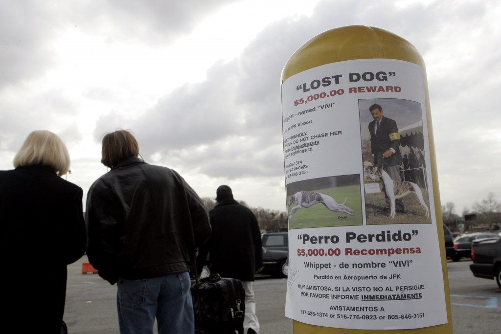 FILE - In this March 24, 2006, file photo, a reward is posted near a parking lot at LaGuardia airport in New York, after Vivi, a show dog, bolted from