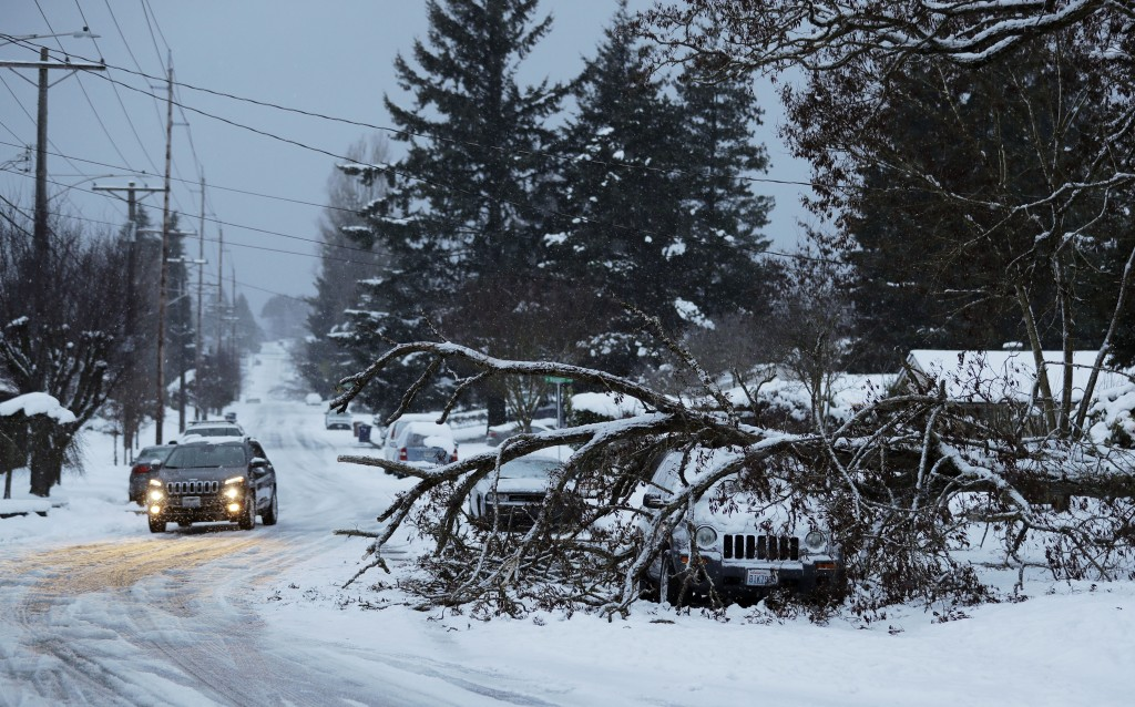 A tree rests on a vehicle, Sunday, Feb. 10, 2019, on a residential street in Tacoma, Wash. Pacific Northwest residents who are more accustomed to rain...