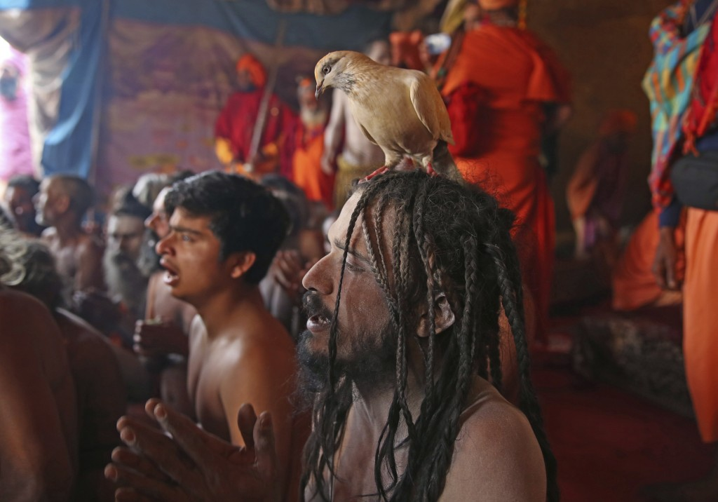 In this Jan. 27, 2019, photo, Hindu holy men of monastic order Juna Akhara participate in a ritual before becoming Naga Sadhus or naked holy men at Sa
